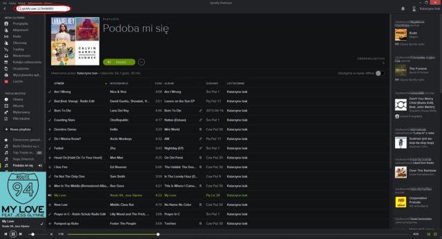 Spotify - wyszukiwanie